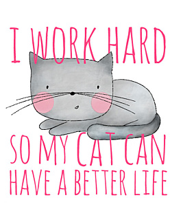I work hard so my cat
