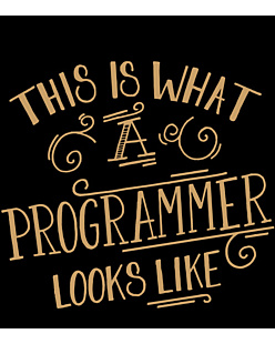 This is programmer