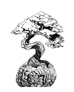 Bonsai Brain