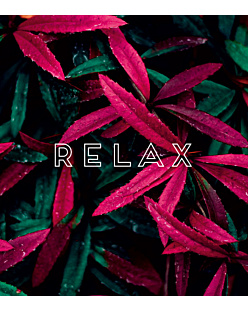 Relax Relax