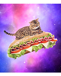 Sandwich Galaxy Cat - Bluza Męska