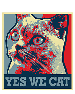 YES WE CAT 1
