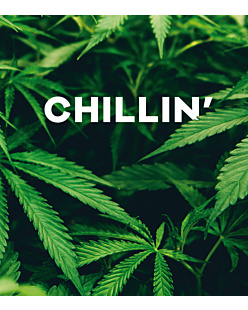 CHILLIN' (CANNABIS)