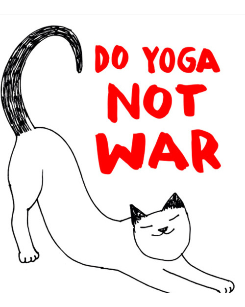 Do Yoga Not War Cat