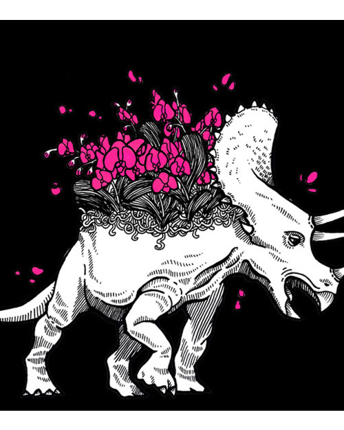 Orchideowy Triceratops