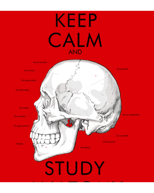 Keep Calm and Study Anatomy