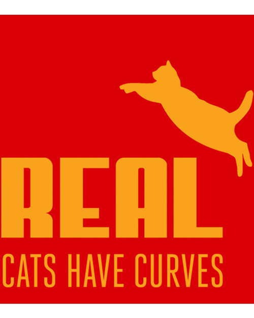 Real Cats Have Curves