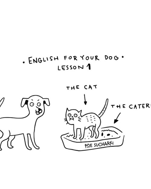 English for your dog